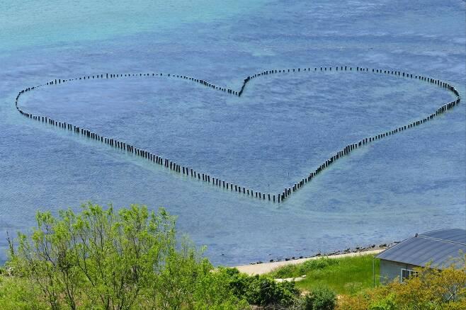 250년 전 애절한 사랑 이야기..청산도 바다에 '♡'로 되살아나.jpg