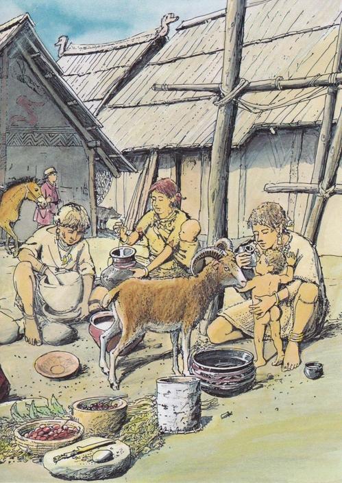약 5천년 전 선사시대부터 젖병에 동물젖 담아 유아 먹여2.jpg