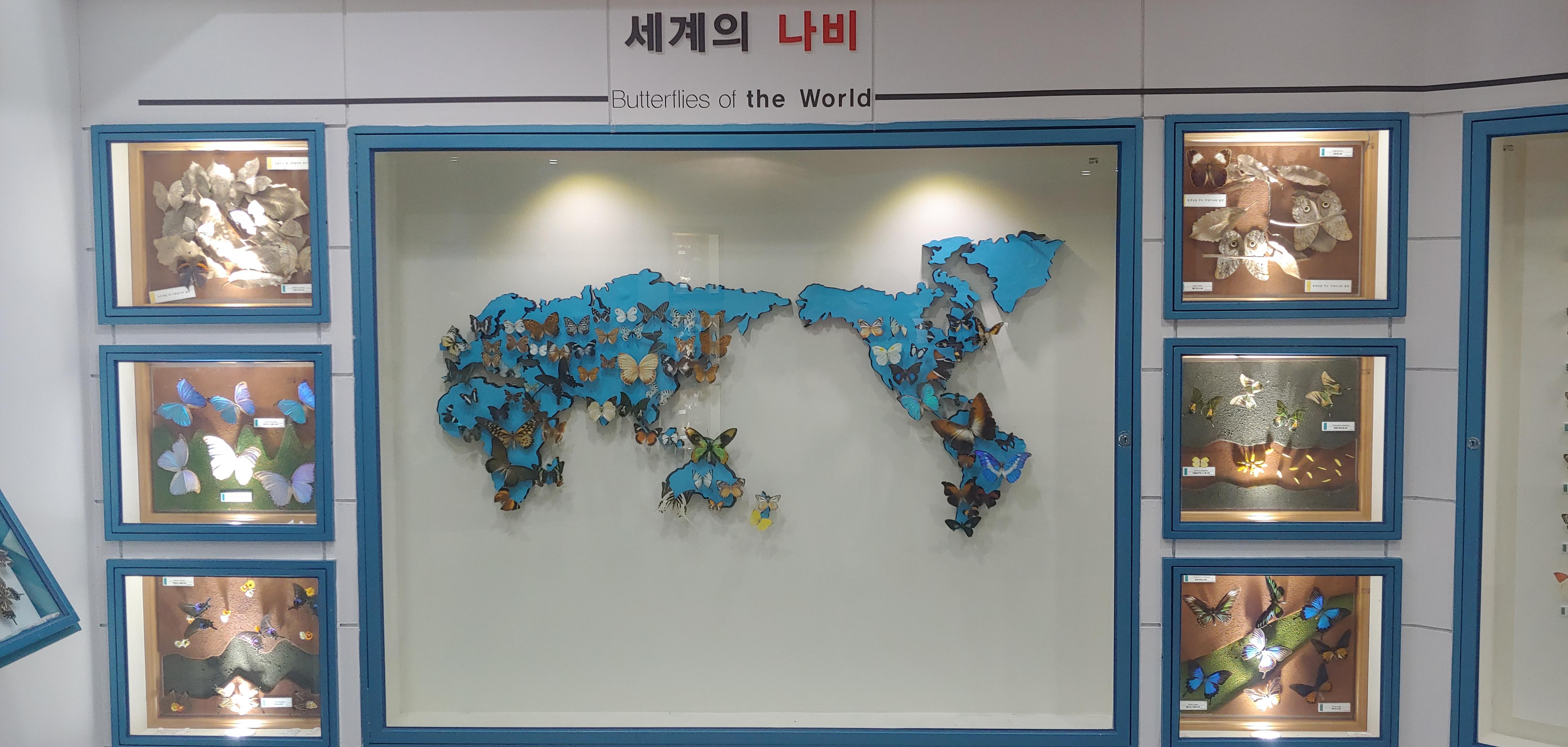 나비생태관(남해군 삼동면) (6).jpg